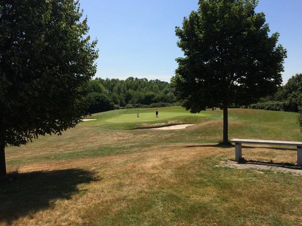 Golfzeit mit drei Hardcore-Analgapern
